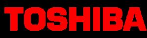 Toshiba Veri Kurtarma