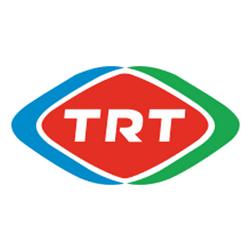 TRT Veri Kurtarma