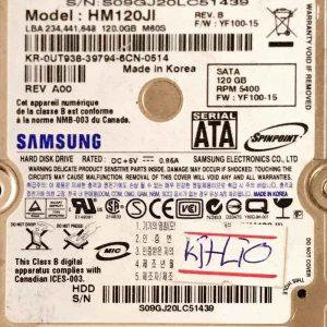 SAMSUNG 120 GB HM120JI M60S BF4100105A REV-02