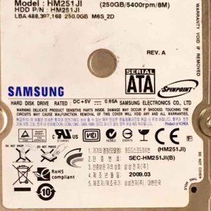 SAMSUNG 250 GB HM251JI MANGO BF4100157A REV-03