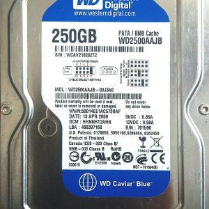 WESTERN DIGITAL 250GB WD2500AAJB REV P1 2060-701596-001